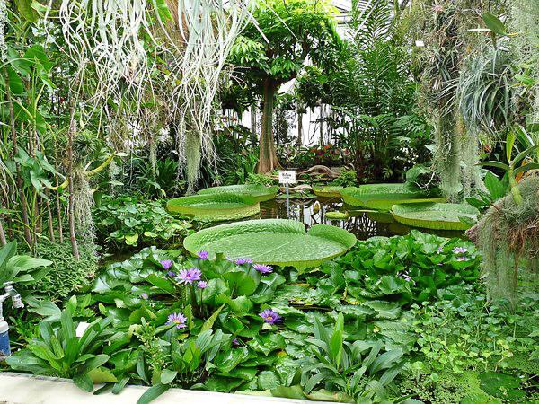 Alter Botanischer Garten in Göttingen